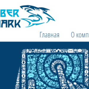 http://www.afu.org.ua/partners/