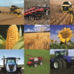 Рентабельність сільського господарства падає, – експерт