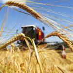 Інвестиції в агросектор України зросли до 11 млрд гривень